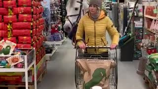 Horse Helps Owner Buy Her Groceries