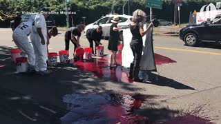 Portland protesters protest ICE and Trump