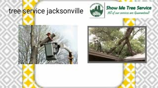 tree pruning jacksonville - Video