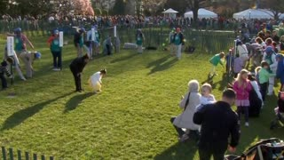 Annual White House Easter Egg Roll gets underway - Video