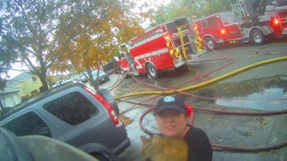 Fireman Rescues Cat from House Fire - Video
