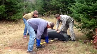 Wolf Catch and Release - Video