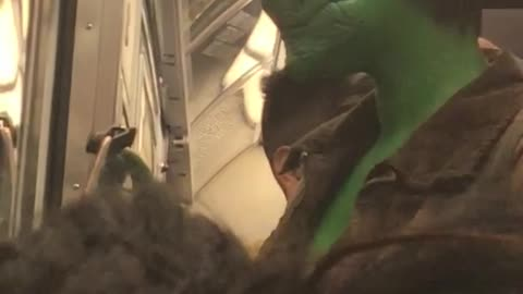 Woman with reptile make up on her face takes a selfie on subway train