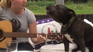 Dog Sings Along While Owner Plays Guitar