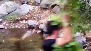 Leafy branch river swing break - Video