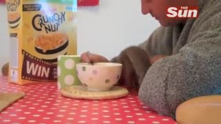 Rescued Squirrel Is Crazy About Cereal – It's So Hilarious !! - Video