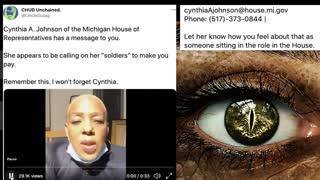 """A Warning to """"Trumpers"""" From MI state representative, Cynthia A. Johnson"""