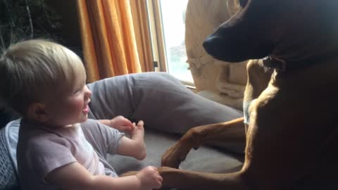 Puppy loving his baby girl best friend with kisses.