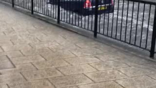 Flash Flooding Causes Driver Madness - Video
