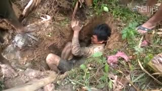 "Unique way to catch ""chuoi"" fish burrowing dry season in Viet Nam - Video"