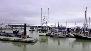 Steveston Marina, Richmond, British Columbia