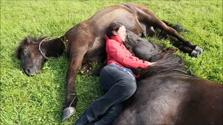 Incredible bond between woman and horses