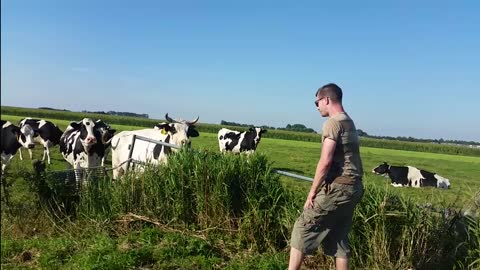 Burps At Cows You Wont Believe What Happens