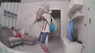 Husky Can't Contain Excitement Upon Owner's Return Home