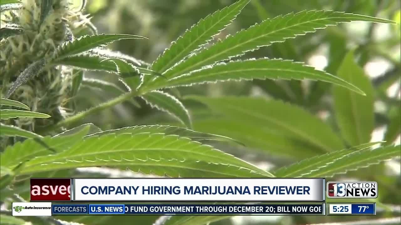 Company will pay person $3K per month to review marijuana