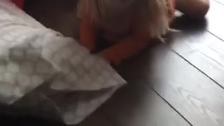 Blonde haired girl falls off chair in slowmotion and screams