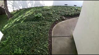 Amazon Delivery Driver Urinates on House