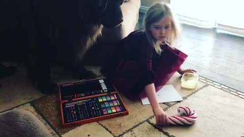 Huge Newfoundland makes it hard for little girl to enjoy gift