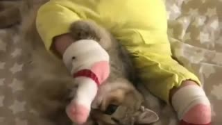 Kitty adorably plays with little baby's feet