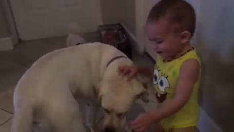 Baby plays with his dog