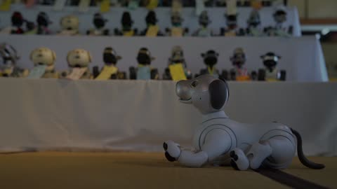 Funeral for robot dog AIBO