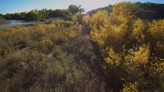 Fall Colors a Drone View