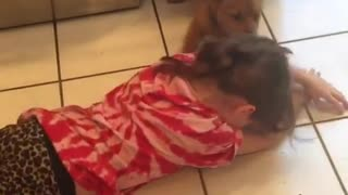 Little girl loves playing with her foster dog