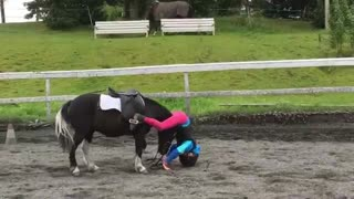 Sweet Pony Knows Just What To Do When Her Rider Falls Off - Video
