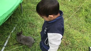 Cute Toddler Singing to Adorable Bunny