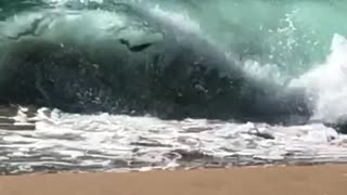 Red boogie board accidentally rides waves into beach faceplants