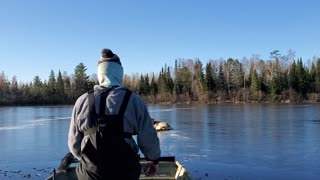 Rescuing a Deer from a Frozen Lake