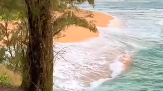 The magical world of nature in the Hawaii. Волшебный мир природы на Гавайях.