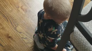 Toddler Takes a Roomba Ride - Video