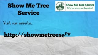tree removal jacksonville - Video