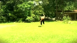 Chubby Redneck Does Backflip - Video