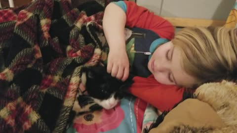 Compassionate little girl helps comfort feral cat