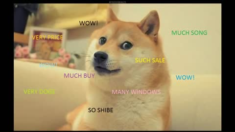 Doge Song