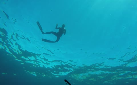 Snorkeler drops GoPro, fetches it from incredible depth