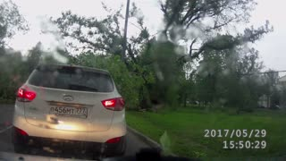 Storm Blows Down Trees in Moscow - Video