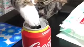 Coke is good