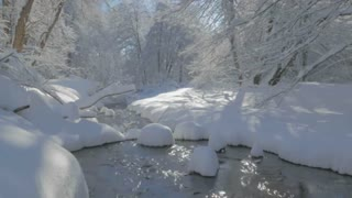 Snowy brook with trees around it