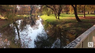 Beauty of Autumn | By NestraX - Video