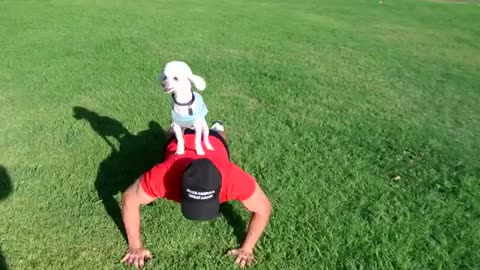 CRAZY TRUMP FAN WORKS OUT IN THE PARK WITH HIS DOG