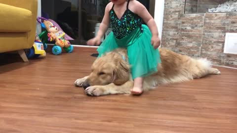 Little baby and sweet goldenretriever hugs and kisses