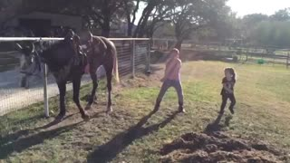 The Horse Is Dancing Together With Two Little Girls - Video