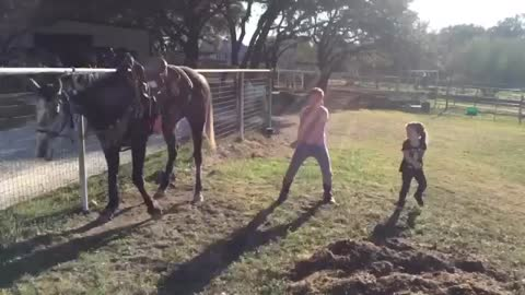 The Horse Is Dancing Together With Two Little Girls
