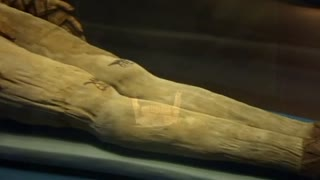 Ancient mummies digitally unwrapped to reveal new secrets