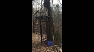 Staircase To Nowhere Topples - Video