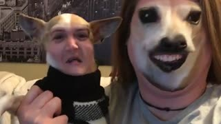 Lady uses snapchat filter to switch faces with dog