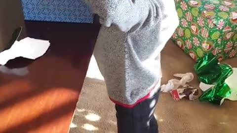 Kid gets pranked with canned foods for Christmas